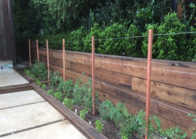 salvaged redwood & wire trellis